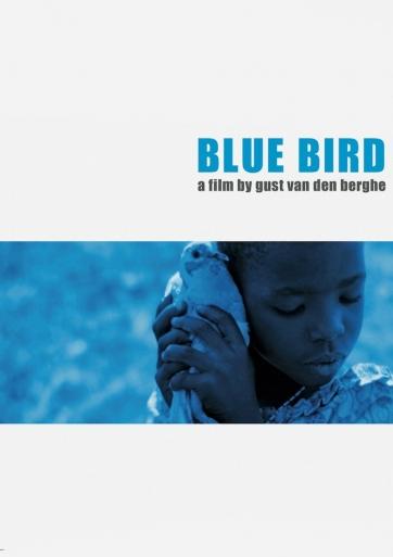 Mėlyna paukštė / Blue bird